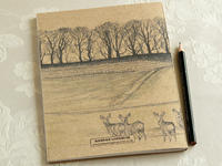 ノロジカのスケッチブックを持って出かけよう! - ブルーベルの森-ブログ-英国カントリーサイドのライフスタイルをつたえる