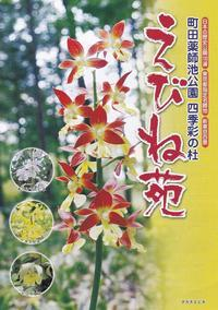 町田えびね苑 - あだっちゃんの花鳥風月
