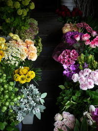 2017/05/05の店内のお花。 - 札幌 花屋 meLL flowers