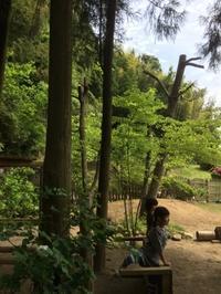 久しぶりの幼稚園 - 旬な暮らし        ~~~ 岩田さんのおやつ ~~~
