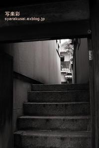 木屋町通を行く6 - 写楽彩