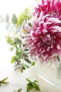 和ばらもアイロニー花も!Wレッスン楽しんでいただきました。 - お花に囲まれて