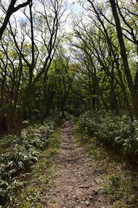 太平記を歩く。 その49 「船上山行宮跡(後編)」 鳥取県東伯郡琴浦町 - 坂の上のサインボード