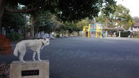 Vol.1179 下田町東公園 - 小太郎の白っぽい世界