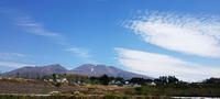 今年は、ちょっと違うみたい^^ - 浅間山眺めてほのぼのlife~花だより♪