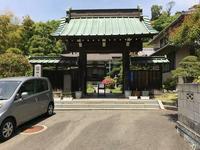 ツツジ  鎌倉笛田 仏行寺 - NPHPブログ版