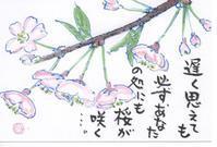 美しい絵手紙 - 誰でも書ける感動する絵手紙