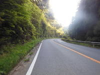 小浜サイ - 速くなくてもいい、強くなくてもいい ただ自転車に乗りたい