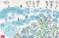 国営ひたち海浜公園 - きゅうママの絵手紙の小部屋