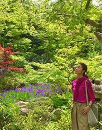 尾形光琳「燕子花図屏風」♪ - 八巻多鶴子が贈る 華麗なるジュエリー・デイズ