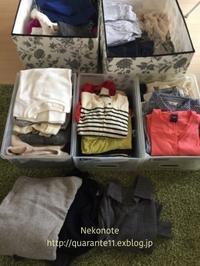 洗濯&衣替え - ネコノテ
