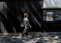 京都国際写真祭(その2) - 写真の散歩道