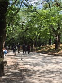 飛鳥山公園散歩♪ - 自然と遊楽
