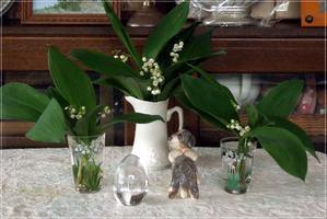 庭のスズランを摘んでララに飾りましょう♪ - Reon&Roses+Lara