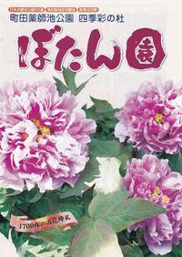 町田牡丹園 - あだっちゃんの花鳥風月