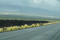 ハワイ旅行 2日目4月30日ハワイ島周遊観光 3 - Let's Enjoy Everyday!
