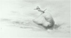 《霧・流れ・石・ヤマセミ》 - 『ヤマセミの谿から・・・ある谷の記憶と追想』