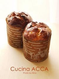 実技課題(6) Panettone - Cucina ACCA
