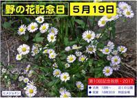 野の花記念日まであと10日 - 楽餓鬼