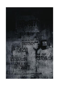 Vietnam Film /#17 - VELFIO