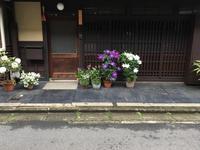 『ご近所には鉢植え名人がおわします〜』 - NabeQuest(nabe探求)