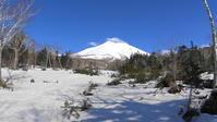 オプタテシケ山 トノカリ林道 2017.5.2 - どんぐり散歩