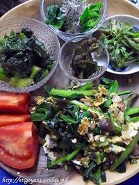 旬の山菜を味わう - これ旨いのか?