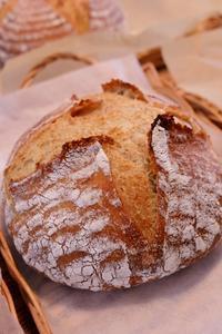 カンパーニュレッスン、はじまりました - 水戸市(茨城)のパン教室 Fika(フィーカ)  ~日々粉好日~