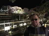 弘前公園 - 津軽三味線奏者・踊正太郎オフィシャルブログ