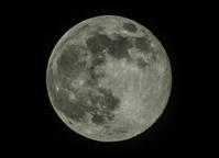 今夜のお月さま、撮り比べ - ぼくの写真集2・・・Memory of Moment