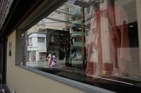 午後の光の中で - Wayside Photos  ☆道端ふぉと☆
