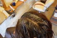 白髪の染め時を考える・・・の巻 - 館林の完全お一人様専用 くつろぎの美容室 ぱ~せぷしょんの ウェブログ