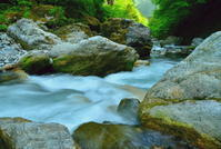 緑淡い春の渓流 1 - 天野主税写遊館