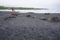 ハワイ旅行 2日目4月30日ハワイ島周遊観光 5 プナルウ黒砂海岸 - Let's Enjoy Everyday!