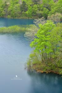 青い湖 - お花びより