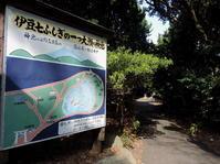 静岡そぞろ歩き:大瀬崎(2) - 日本庭園的生活