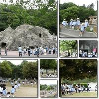 年中組遠足 : みさき公園 - ひのくま幼稚園のブログ