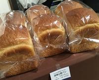 パンフェス行きました☆彡 - Kyoto Corgi Cafe
