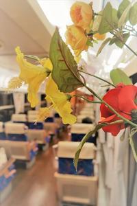 MFの花 - 今日も丹後鉄道