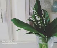 美しい季節 - 花とフラと好きなものに囲まれて…♪