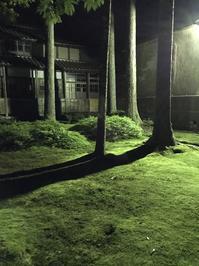 苔の里 ライトアップ - たっちゃん!ふり~すたいる?ふっとぼ~る。  フットサル 個人参加フットサル 石川県