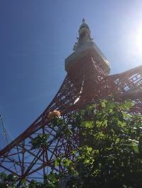 数十年ぶりの東京タワー - Life w/ Pure & Style
