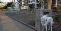 Vol.1181 篠原町公園 - 小太郎の白っぽい世界