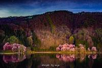 中綱湖の夜 - o'night