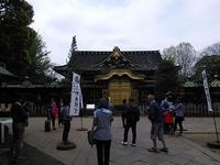 上野東照宮とぼたん苑 - e-voyage