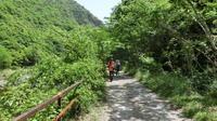 新緑の武庫川渓谷へ ハイキング - パーマ屋のおばさん
