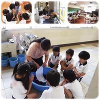 こいのぼり作り - ひのくま幼稚園のブログ