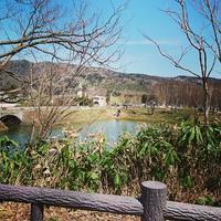 実家へ - 札幌市南区石山  漢方・自然療法教室 Noya のや