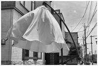 バルーンスカート - BobのCamera