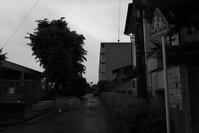 雨の日 - 節操のない写真館